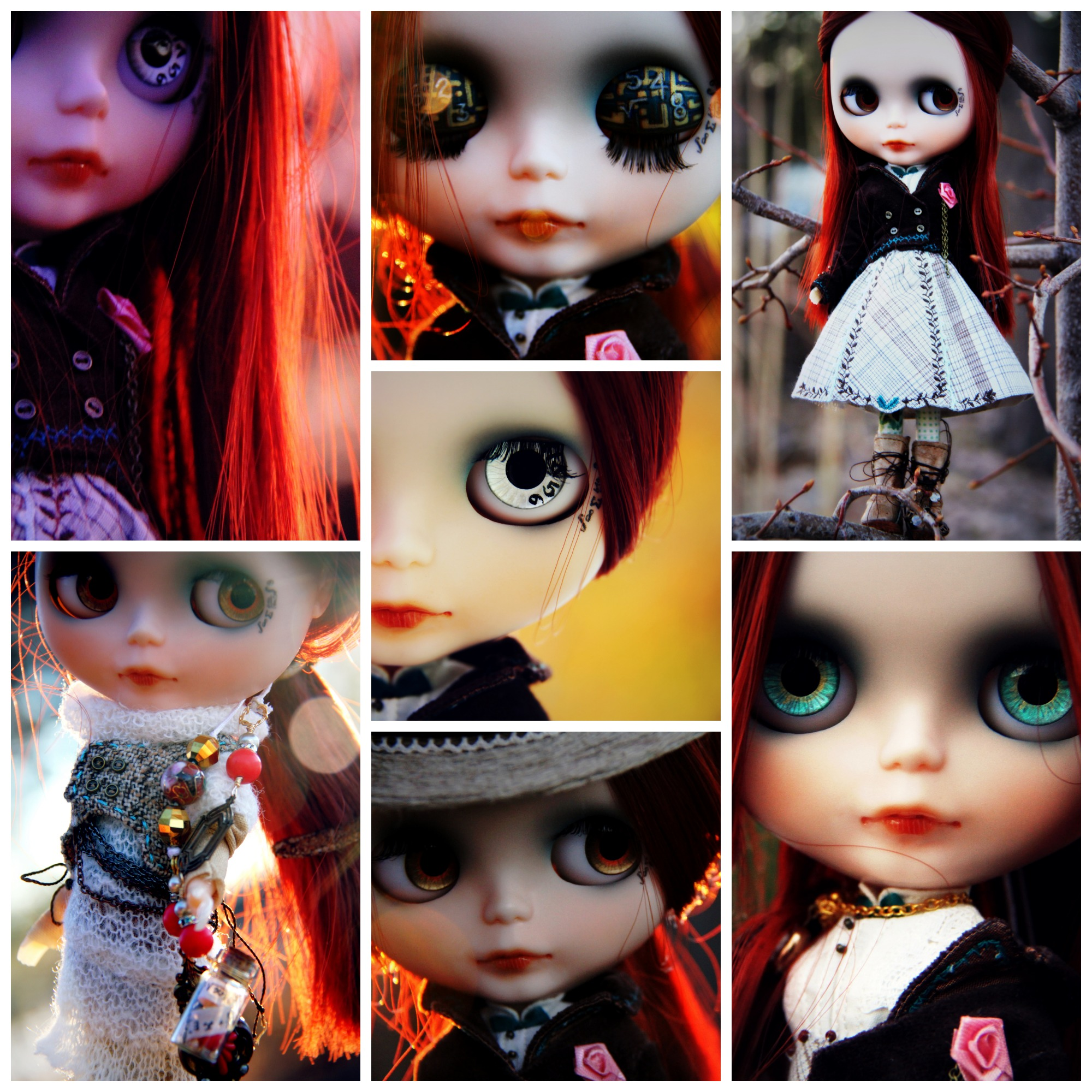 Genesis Collage